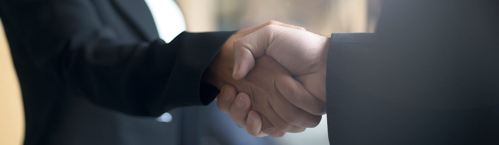 Two persons in business suits shaking hands